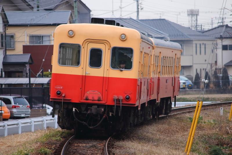 1N2A3441.jpg