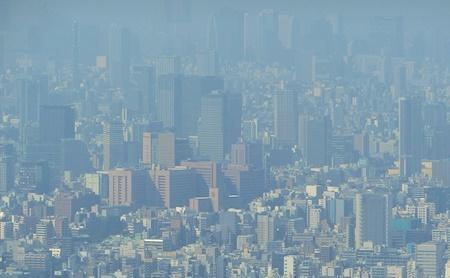 東京スカイツリー眺め