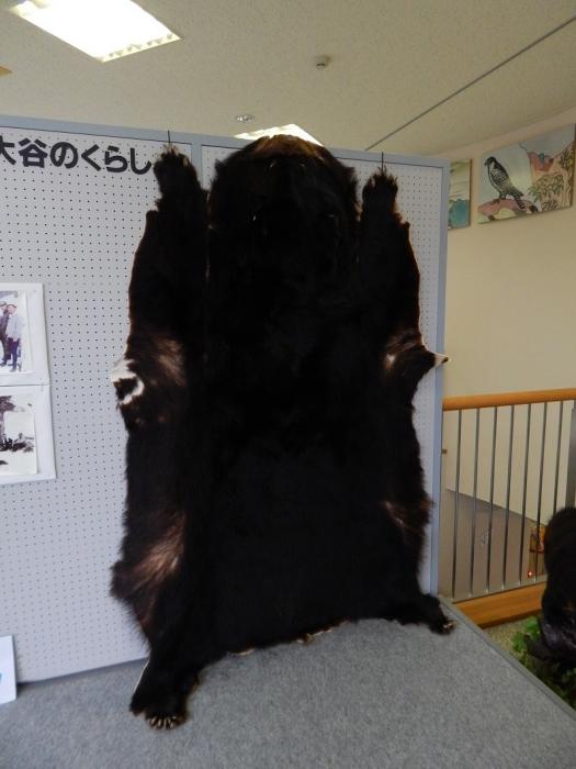 DSCN3990大谷ダム