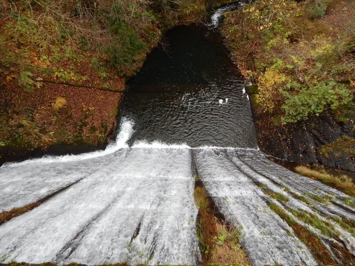 DSCN4055加茂水源池第一ダム