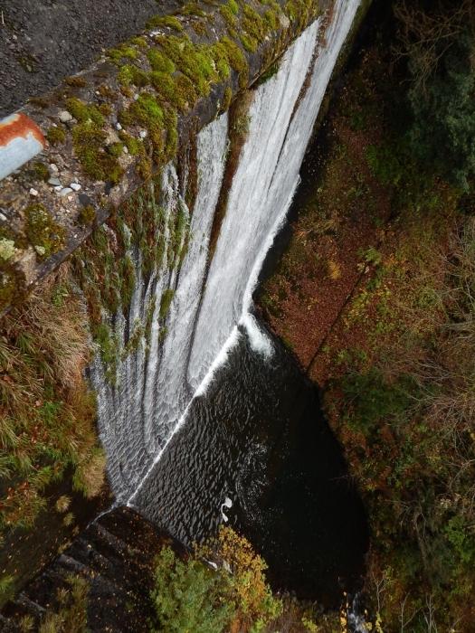 DSCN4053加茂水源池第一ダム