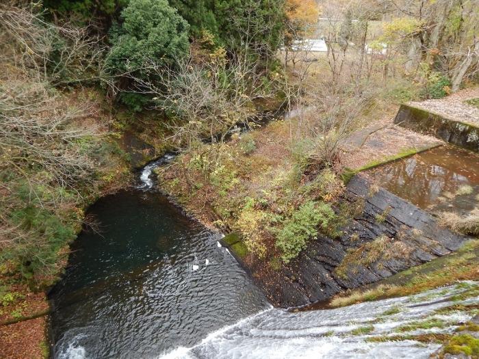 DSCN4060加茂水源池第一ダム