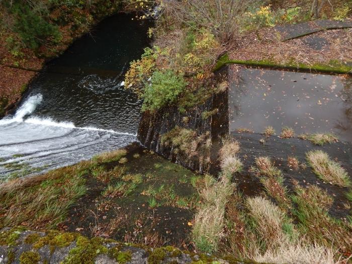DSCN4062加茂水源池第一ダム