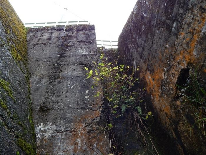 DSCN4085加茂水源池第一ダム