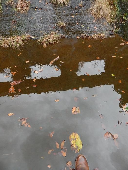 DSCN4101加茂水源池第一ダム