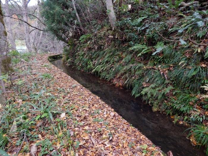 DSCN4111加茂水源池第一ダム