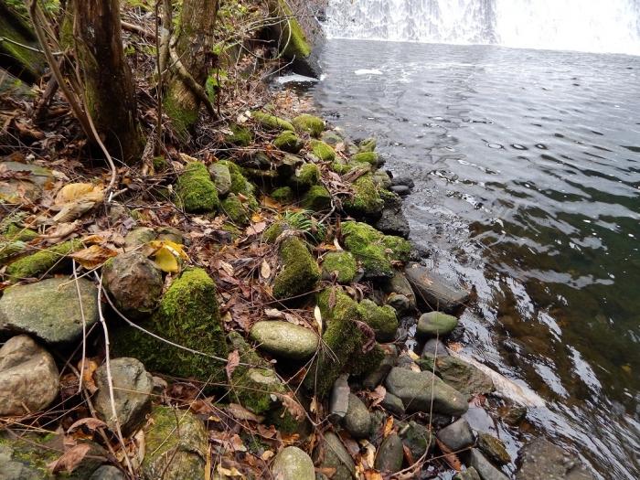 DSCN4123加茂水源池第一ダム