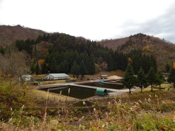 DSCN4216加茂水源池第一ダム