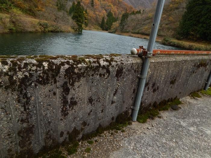 DSCN4169加茂水源池第二ダム