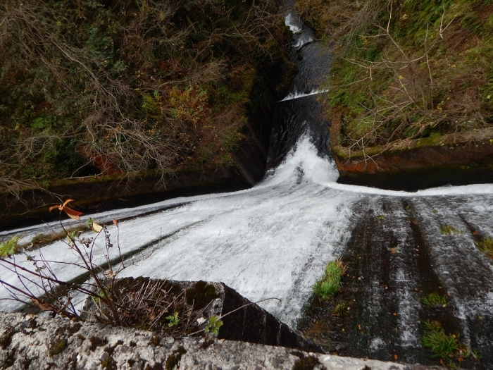 DSCN4172加茂水源池第二ダム