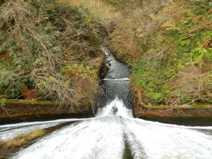 DSCN4176加茂水源池第二ダム