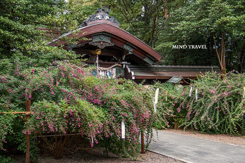 梨木神社 萩3