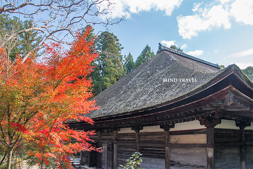 長寿寺-本堂