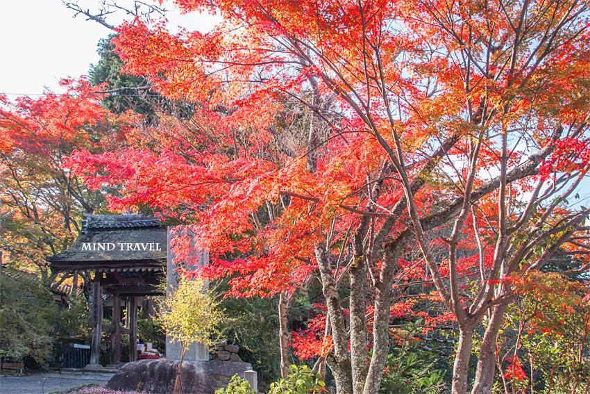 長寿寺 門