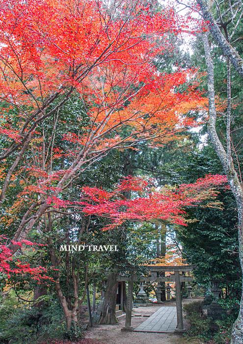 長寿寺 白山神社 鳥居2