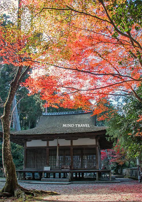 長寿寺 白山神社 拝殿
