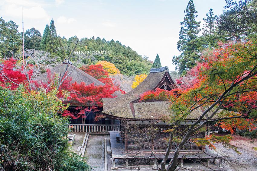 長寿寺 本堂 白山神社 拝殿