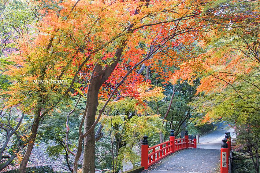 今熊野観音寺 橋