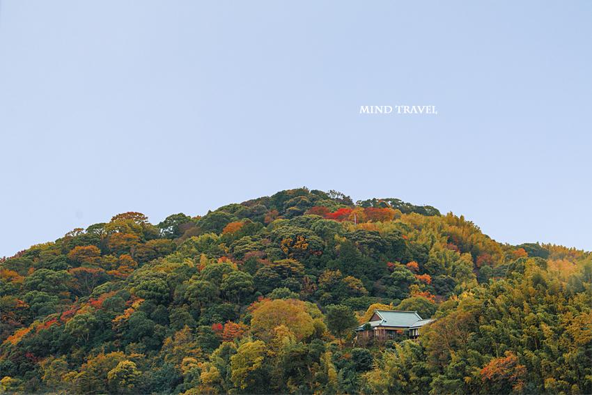 男山 神応寺