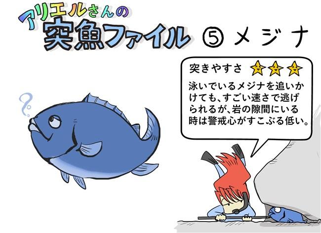 suzuki - コピー
