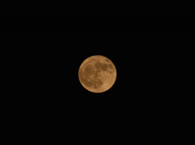 moon157_20171104_334_FFF_0197.jpg