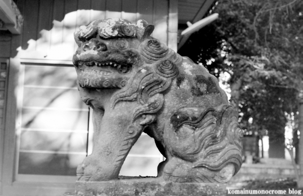 氷川神社(上尾市上)1