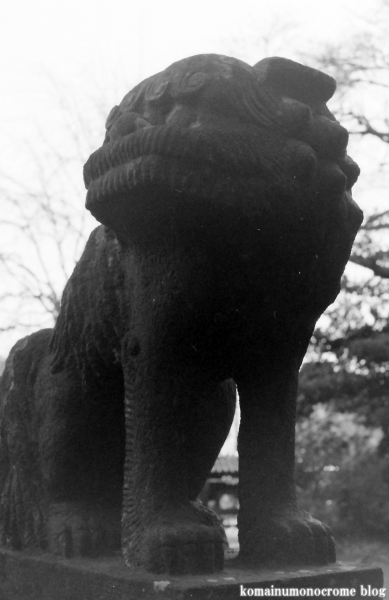 氷川神社(さいたま市見沼区丸ケ崎町)4
