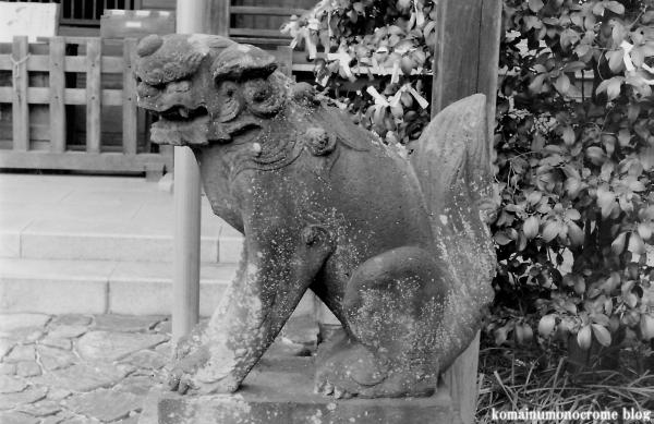 杉山神社(横浜市港北区新羽町)1
