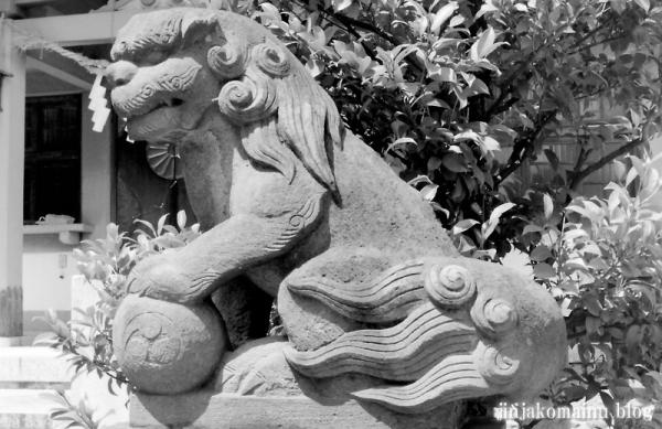 杉山神社(横浜市港北区新羽町) a1