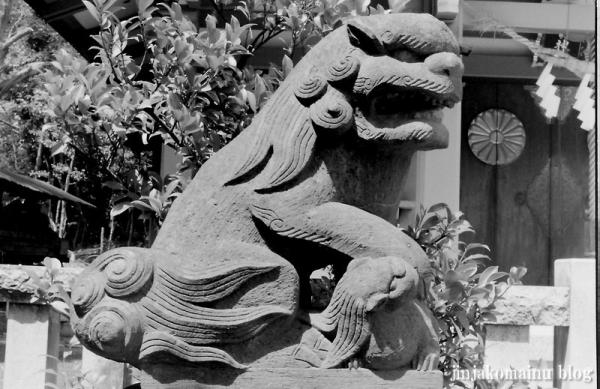 杉山神社(横浜市港北区新羽町) a3