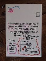 葉菜粉さん201710232