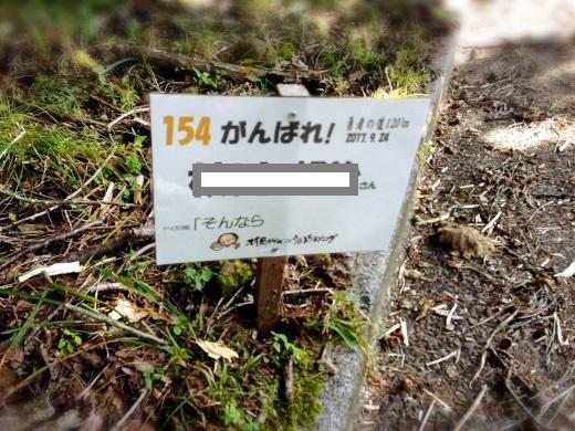 S__125231107.jpg