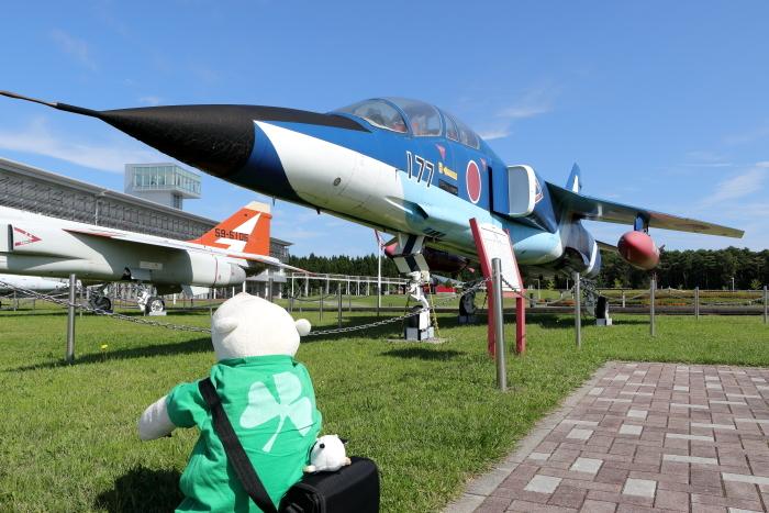 T-2BI.jpg