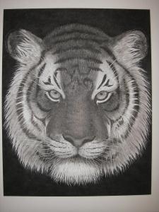 初挑戦第17回虎の顔秀作