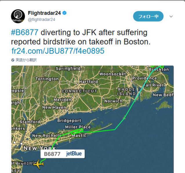バードストライクによって急遽行先変更した機。BSは本当に墜落するほど怖いらしい。