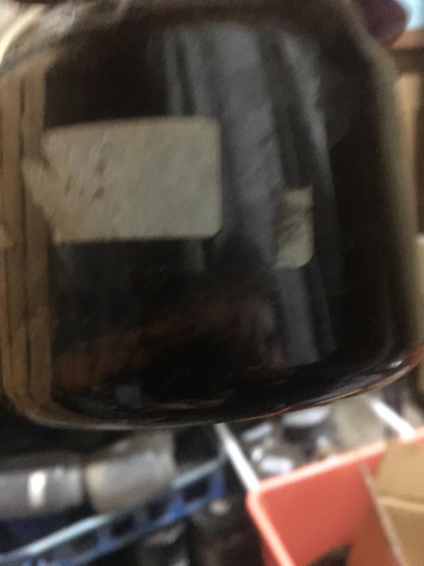 パチェコ蛹