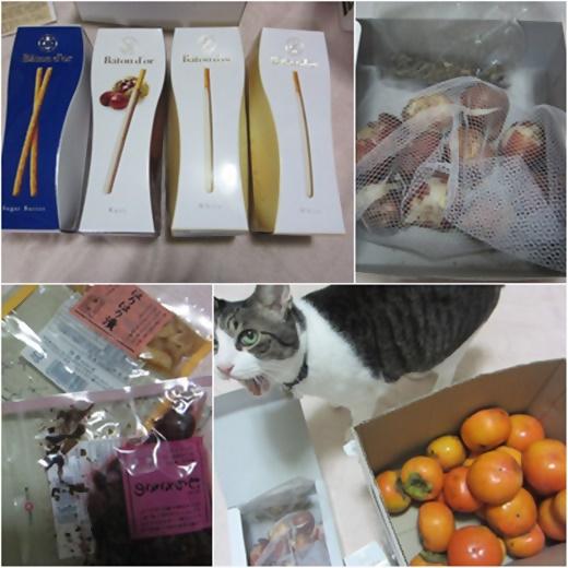 cats_20171110195154ba5.jpg