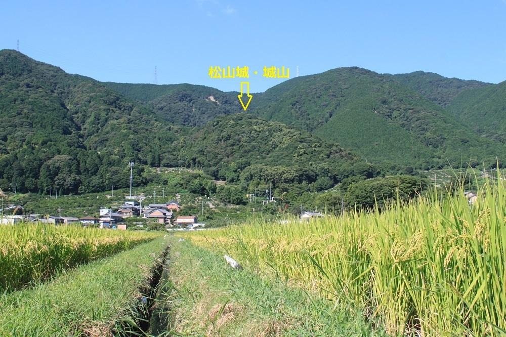 m-matuyama (8)