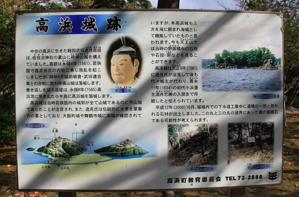 w-takahama (1)