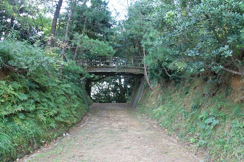 w-takahama (2)