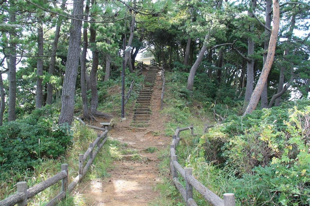 w-takahama (6)