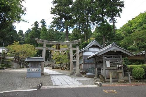 w-takahama (14)