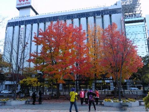 百貨店と紅葉