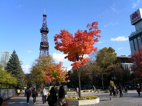 テレビ塔と紅葉