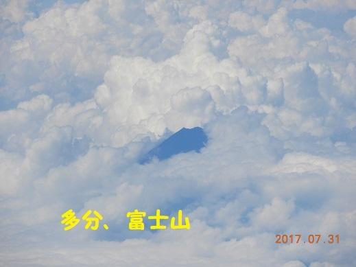 DSCN2437.jpg