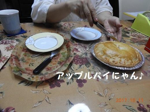 DSCN3286.jpg