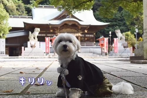 戸上神社3