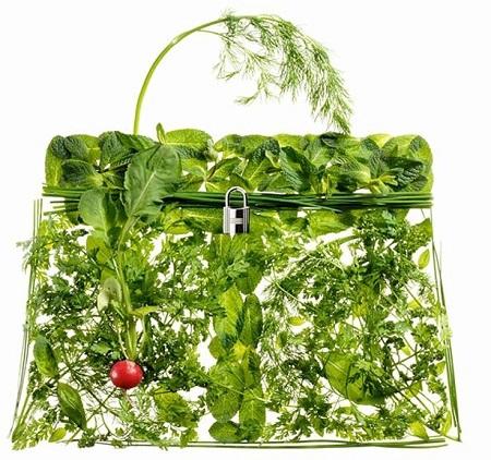hermes-bag-greens.jpg