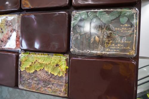 Technebroma-cacao05.jpg