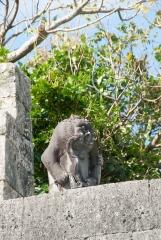 玉陵 たまうどぅん 獅子石像